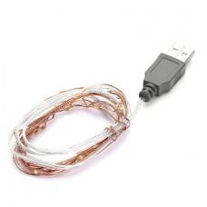 20 LED USB Copper String Light (2.0m) (OEM)